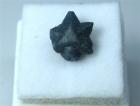 Twinned Benitoite Crystals, aka Star of David